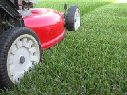 Grass Cutting And Lawn Mowing Service In Sheffield