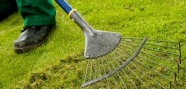 Lawn Treatment Service In Sheffield