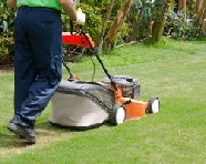 Recommended Grass Cutting Service In Sheffield